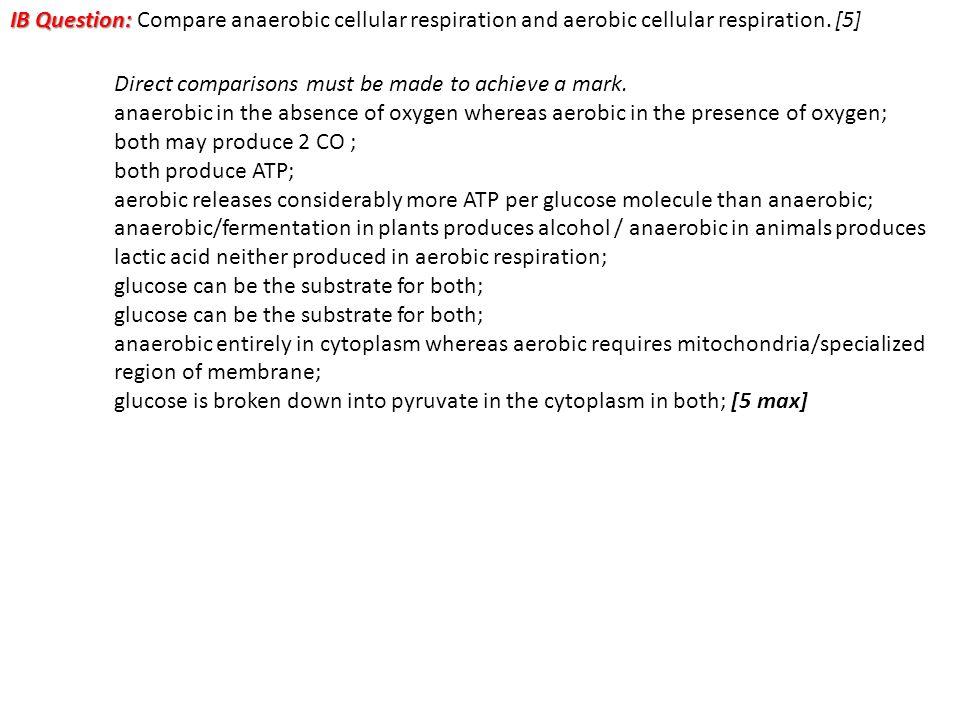 IB Question: Compare anaerobic cellular respiration and aerobic cellular respiration. [5]